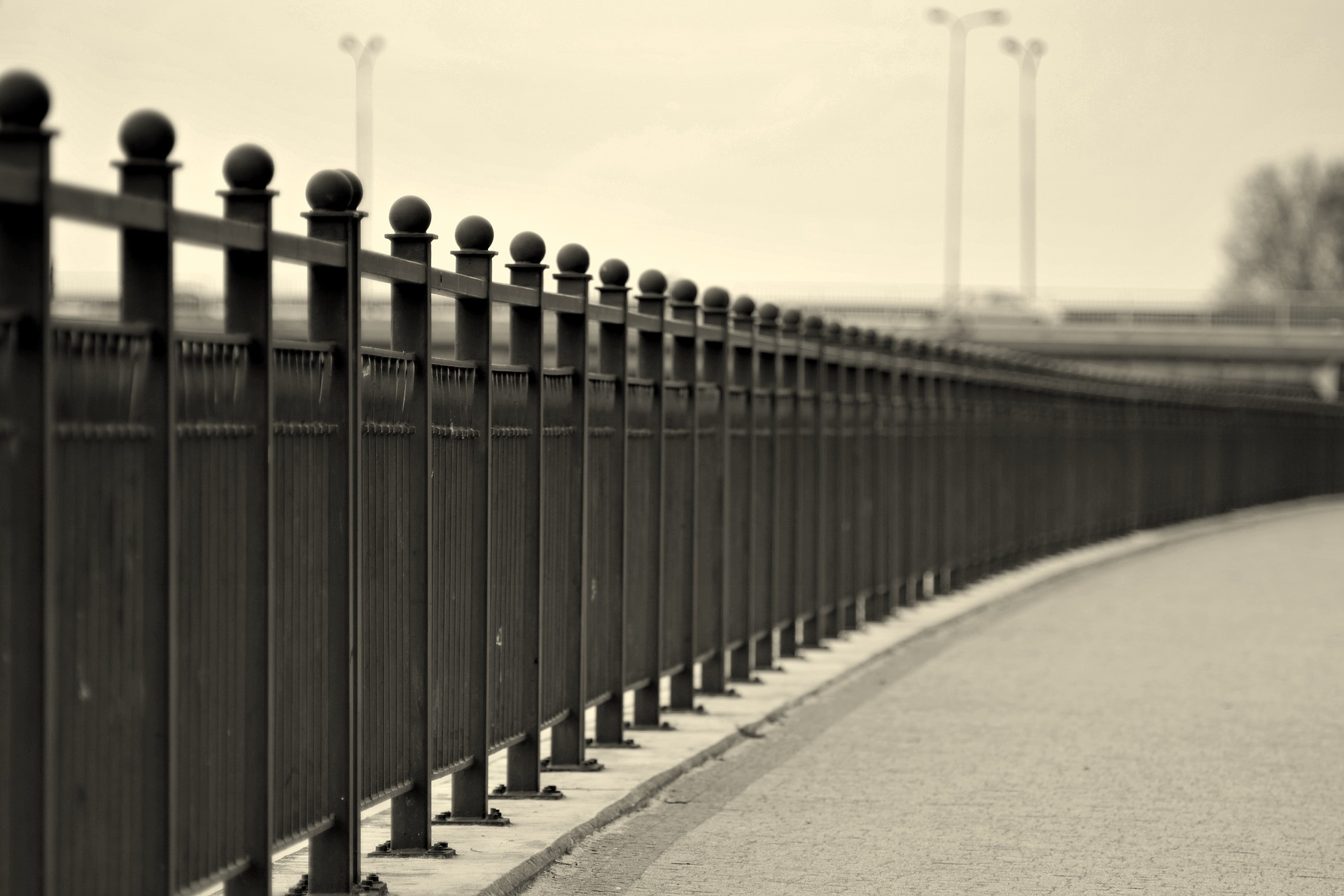 the-fence-2142212_1920